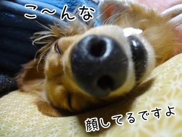 kinako1641.jpg