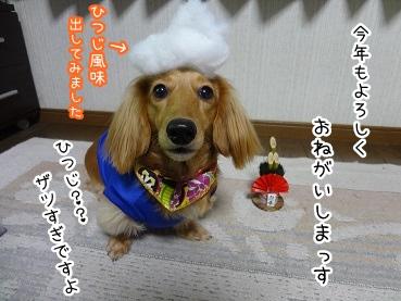 kinako1653.jpg