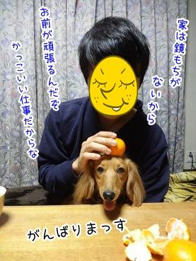 kinako1656.jpg