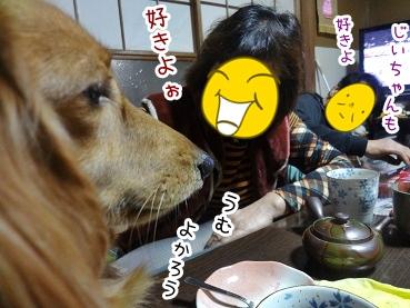 kinako1681.jpg