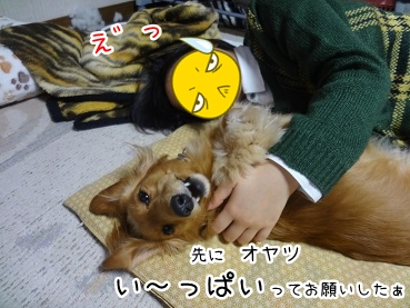 kinako1705.jpg