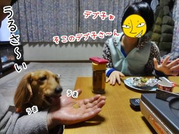 kinako1711.jpg