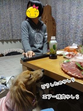 kinako1746.jpg