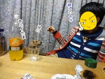 kinako1756.jpg