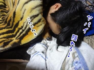 kinako1806.jpg