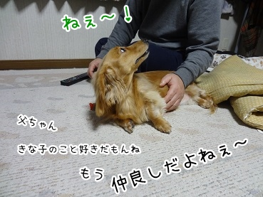 kinako1812.jpg
