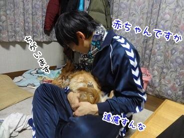 kinako1813.jpg