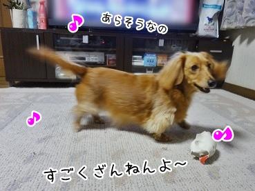 kinako1860.jpg