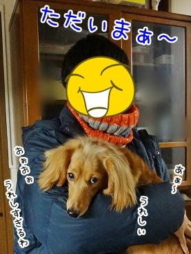 kinako1875.jpg