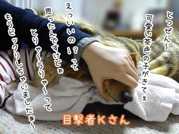 kinako1885.jpg