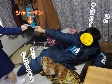 kinako2032.jpg
