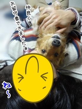 kinako2034.jpg
