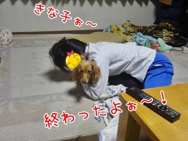 kinako2036.jpg