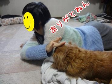 kinako2061.jpg