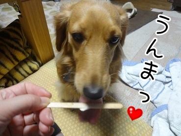 kinako2092.jpg