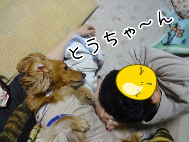 kinako2114.jpg