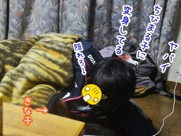 kinako2120.jpg