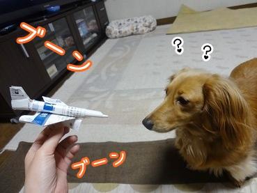 kinako2144.jpg