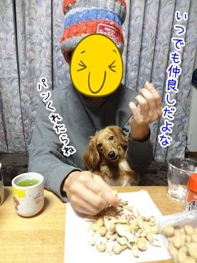 kinako2159.jpg