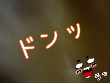 kinako2173.jpg
