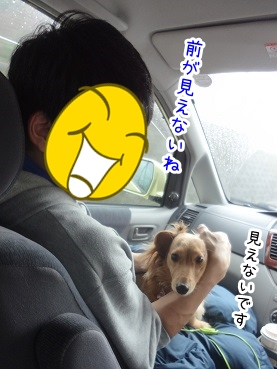 kinako2198.jpg