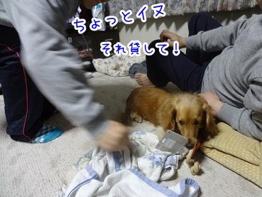 kinako2209.jpg