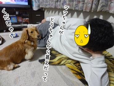 kinako2245.jpg
