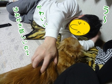 kinako2246.jpg