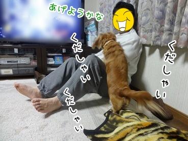kinako2248.jpg