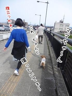 kinako2258.jpg