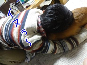 kinako2278.jpg