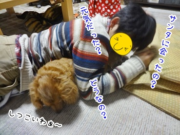 kinako2279.jpg
