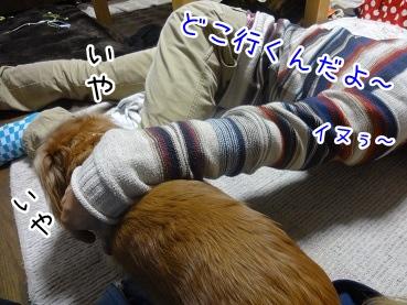 kinako2280.jpg