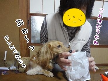kinako2292.jpg