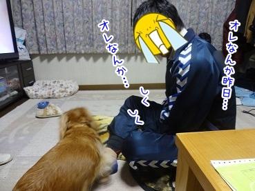 kinako2303.jpg