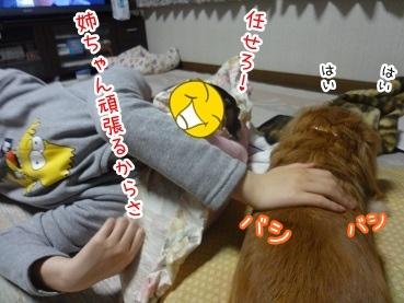 kinako2309.jpg