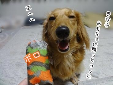 kinako2314.jpg