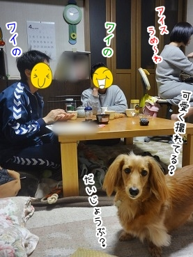 kinako2321.jpg