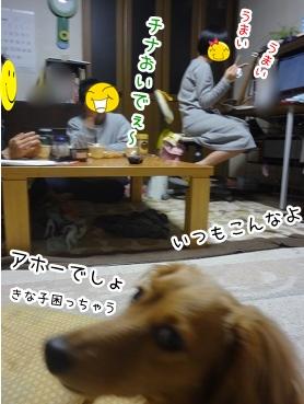 kinako2322.jpg