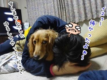 kinako2334.jpg