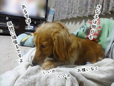 kinako2370.jpg