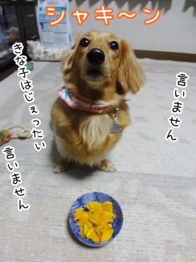 kinako2383.jpg