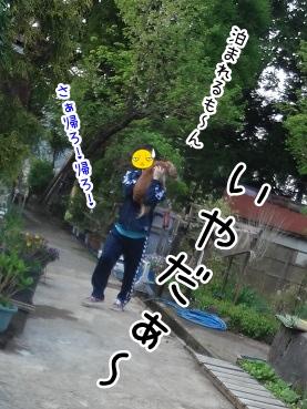 kinako2411.jpg