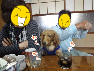 kinako2429.jpg