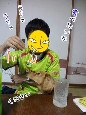 kinako2433.jpg