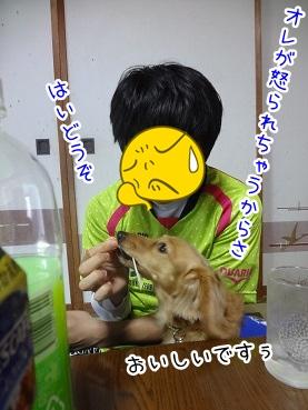 kinako2438.jpg