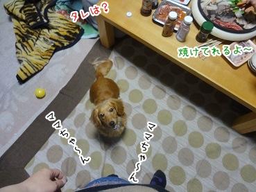 kinako2455.jpg