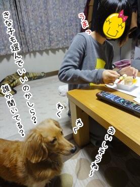 kinako2459.jpg