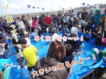kinako2469.jpg