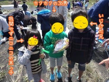 kinako2474.jpg